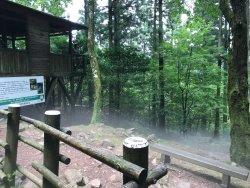 Kazaana - Kamihayashi Forest Park