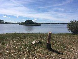 Vela Lake
