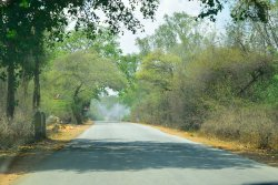 Mangalore to Bangalore Dream Route