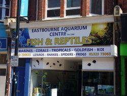 Eastbourne aquarium and reptile centre