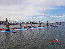 Water Dog Floating Yoga