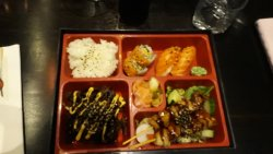 Very good Sushi place with othet dishes also