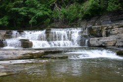 Wintergreen Park And Falls