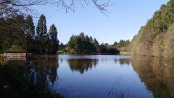 The lake at Tredegar House