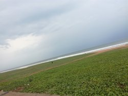 Palavakkam Beach