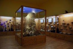 Regional Natural History Museum of Plovdiv