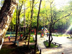 Park Przygody Nowa Makumba