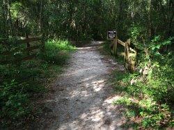 Loblolly Woods Nature Park