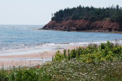 Sally's Beach Provincial Park
