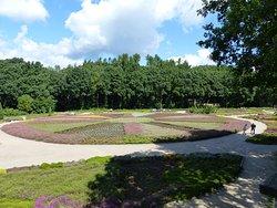 Heidegarten im Höpen