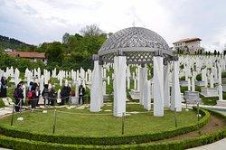 Alifakovac Cemetery