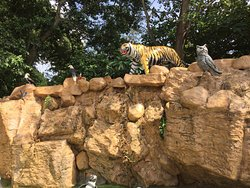 Mumbai Zoo (Veermata Jijabai Udyan)