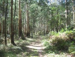 Butterfield Reserve