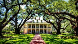 ‪Oak Alley Plantation‬