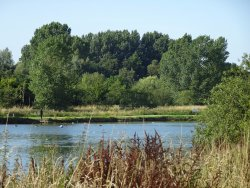 Nantwich Lake