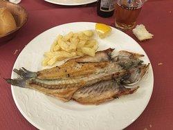 Menú del día bueno y barato en la plaza mayor de Lerma