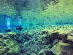 Dive Iceland - Diving and Snorkeling in Iceland - Day Tours