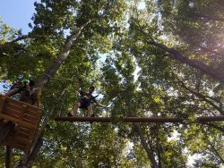 TreEscape Aerial Adventure Park