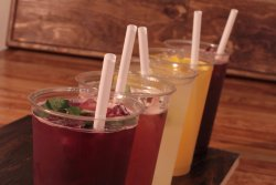 The Fizz Sodas + Sandwiches