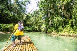 Paradise Palms Jamaica Tours