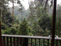 the most beautiful spa hotel retreat in Ubud, Bali