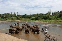 360 Tours Lanka