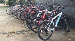 Lombok Biking