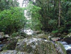 Parque Estadual do Pau Oco