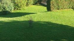 Zona de juegos en el jardín