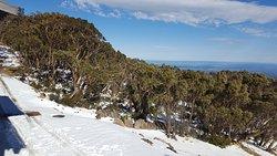 Mt Baw Baw Summit Walk
