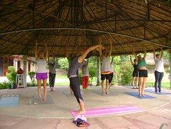 Padma Healing Arts