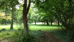 Baerenwiese Park