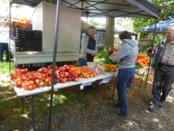 The Kyneton Farmer's Market