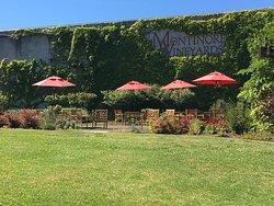 Montinore Vineyards