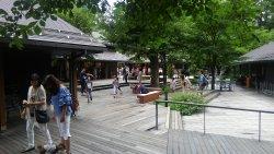 Harunire Terrace