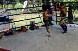 Pai Muay Thai - Wisarut