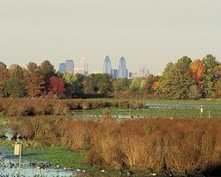 John Heinz National Wildlife Refuge at Tinicum