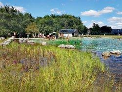 Baignade Naturelle du Pays de Chambord