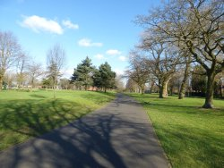 Summerfield Park