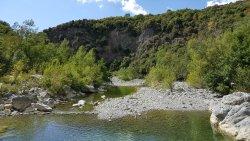 Foresta di Berignone