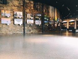 Foto Gallerie - Die Bühne der Fotokunst