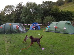 Masons campsite - FAB - always know you're going to have a great break, even when it rains.