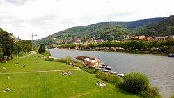 Neckarwiese Heidelberg