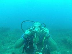 Club de Plongée La Sirène - Djerba Diving Center