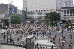 ‪Shibuya Crossing‬