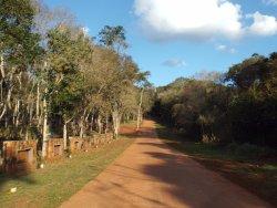 Selva Iryapu La Reserva