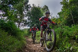Infinity Mountain Biking Bali - Day Tours