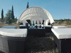 La Biagiola Winery