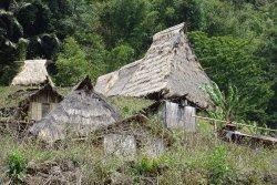 saga Traditional Village
