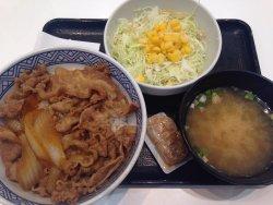 Yoshinoya JR Shizuoka Station